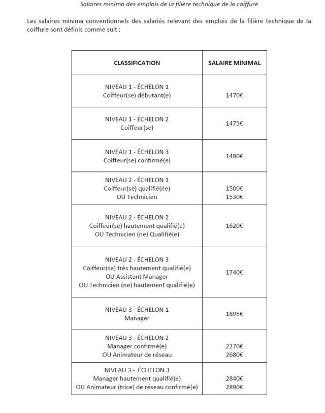 Coiffure salaires 2014 union d partementale fo 53 mayenne - Grille salaire chambre agriculture ...